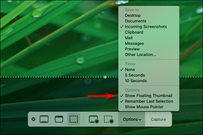 Uncheck Show Floating Thumbnail in screenshot options on a Mac