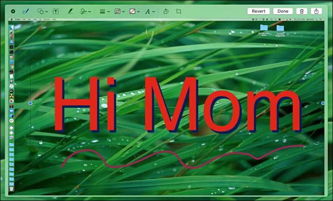 The macOS screenshot editing tool