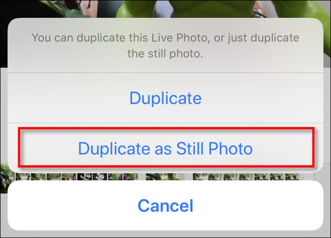 "Tap ""Duplicate as Still Photo"" in Photos on iPhone."
