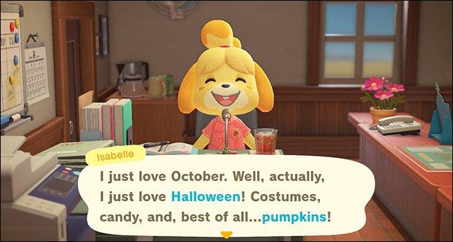 ACNH Isabelle pumpkin announcement